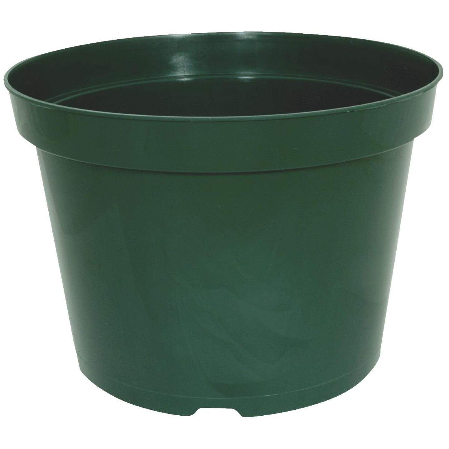 Myers 3-1/2 In. H x 4 In. Dia. Green Poly Flower Pot Image 1